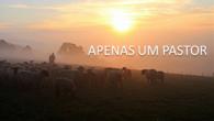 APENAS UM PASTOR  Julio Borges Filho Nunca quis ser outra coisa senão pastor, Apenas um bom pastor de ovelhas-gente, Um guia que não fosse igual… Diferente De outros guias […]